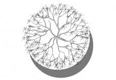 Tree top view | FREE AUTOCAD BLOCKS