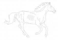 Horse | FREE AUTOCAD BLOCKS