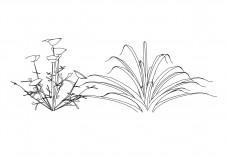 Plant elevation | FREE AUTOCAD BLOCKS